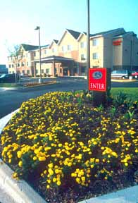 Comfort Suites Dover - USA
