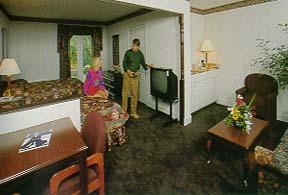 Comfort Suites Nashville - USA
