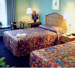 Hampton Inn & Suites Elmwood - USA