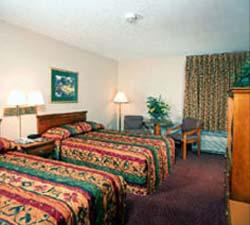 Hampton Inn Orlando - Convention Center - USA